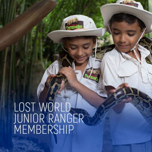 Lost World Junior Ranger