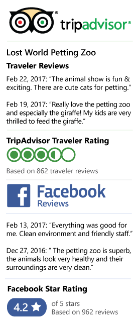 Lost World Petting Zoo Review on Tripadvisor and Facebook