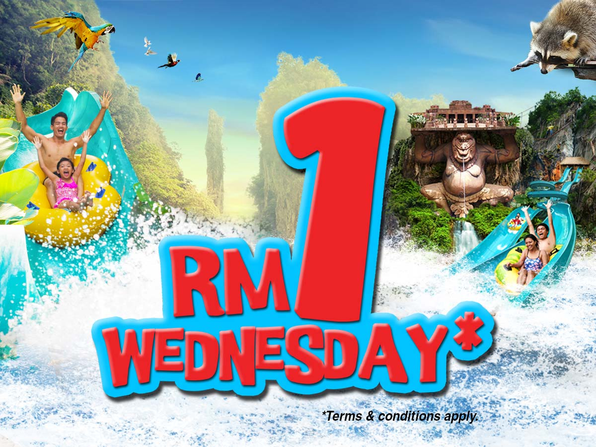 RM1 Wednesday